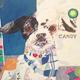 弊社所属アーティストISSEI「東京インターナショナルアートフェア 2016」に参加